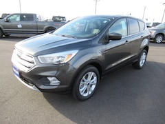 2019 Ford Escape SE Advanced Technology/Safety Package SUV