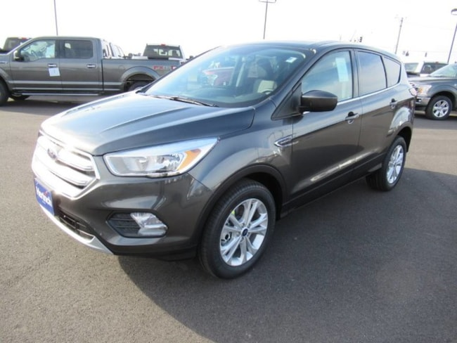 2019 Ford Escape SE Technology SE Advanced Technology/Safety Package SUV