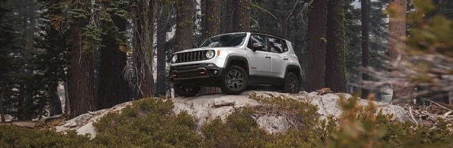 2018 Jeep Renegade in Glacier Metallic