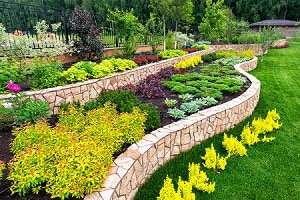 Landscaping for Everyone