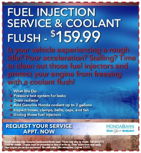 Fuel Injection Service & Coolant Flush