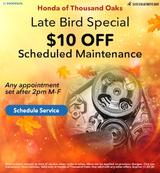 Late Bird Special