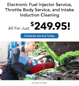 Fuel Injector, Throttle Body, & Intake Induction Cleaning Service