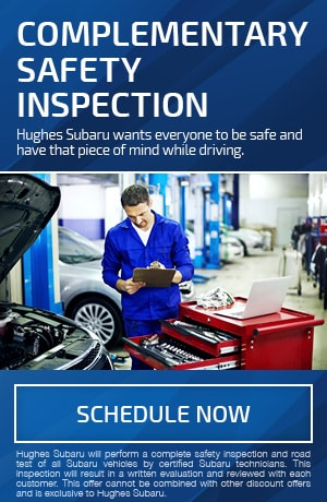 Complementary Safety Inspection
