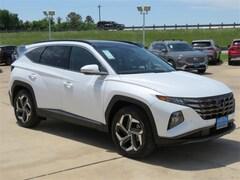 2022 Hyundai Tucson Limited SUV 5NMJE3AEXNH013427 for sale in Brenham, TX
