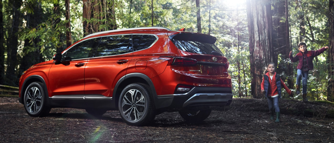 Red 2020 Hyundai Santa Fe in forest