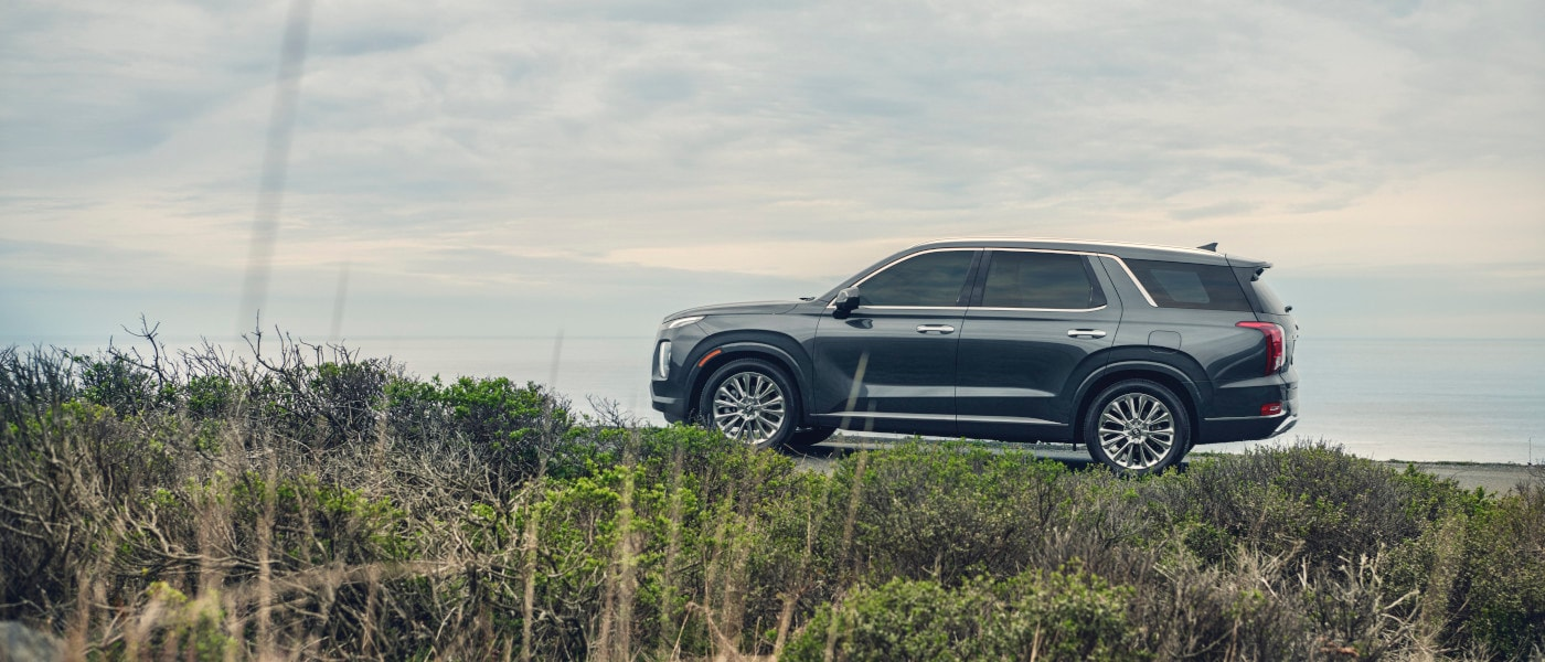 2020 Hyundai Palisade near beach