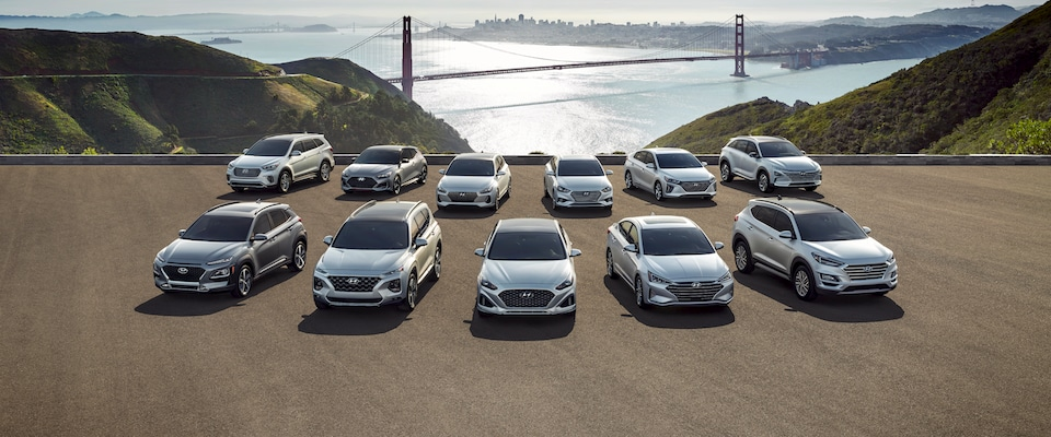 The Hyundai Model Lineup parked infront of a bridge and ocean