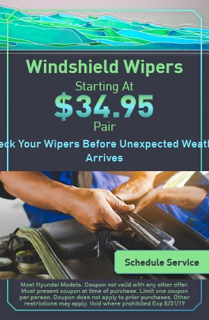 Windshield Wipers Special