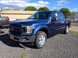 2020 Ford F-150 101A