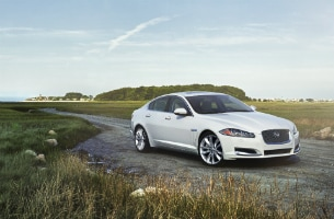 Jaguar XF 3.0 Polaris White
