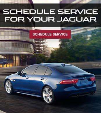 steele nearest scotia dealership dealer used specials nova new img jaguar homepage and thumbnail halifax