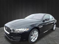 2019 Jaguar XE Premium Sedan SAJAJ4FX6KCP46730