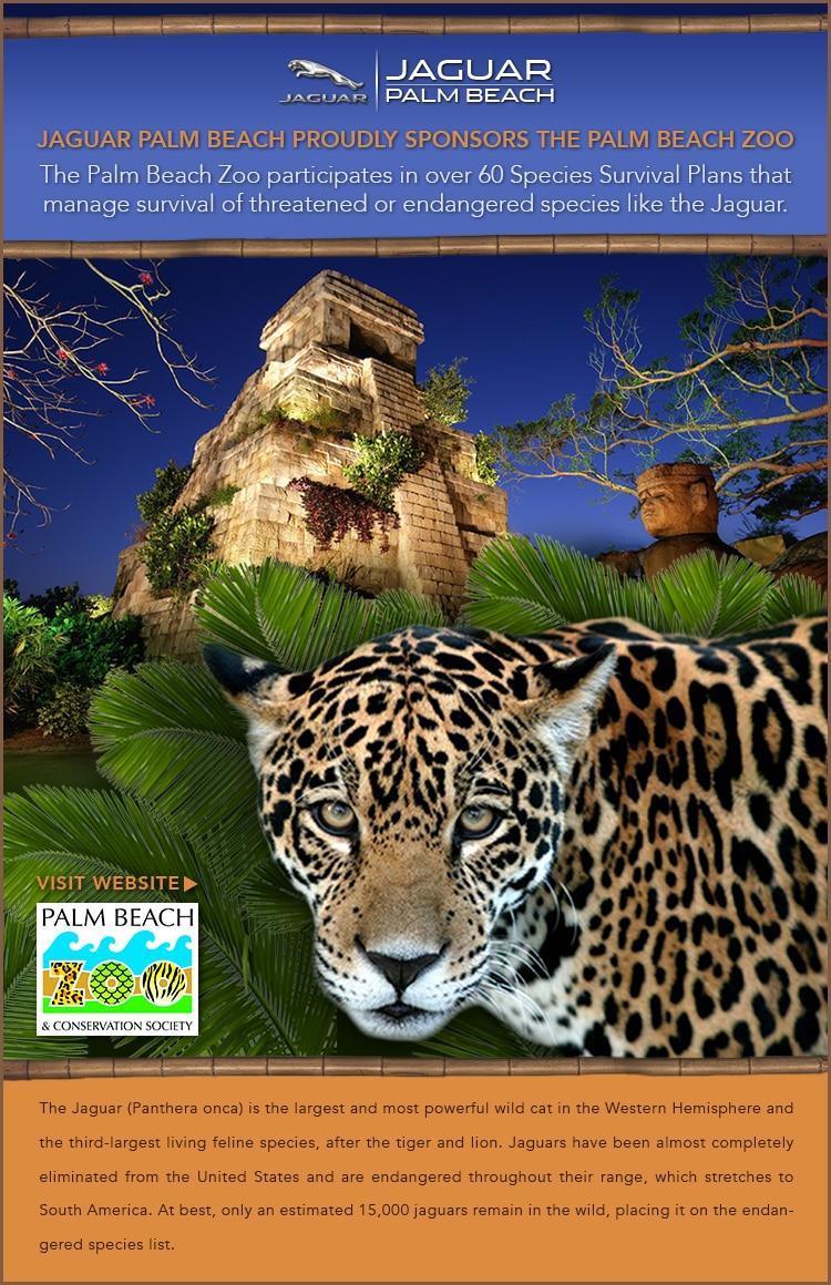 dcp florida building projects fort lauderdale jaguar alpine