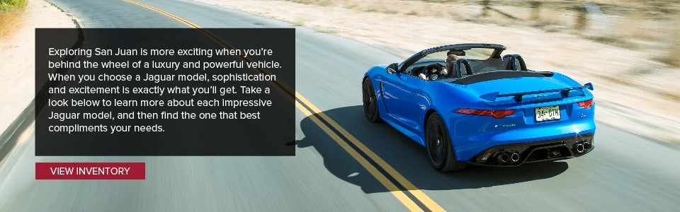 Which Jaguar Model Is Right For You