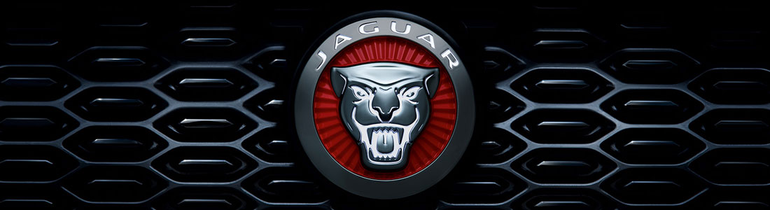 Jaguar Executive Fleet