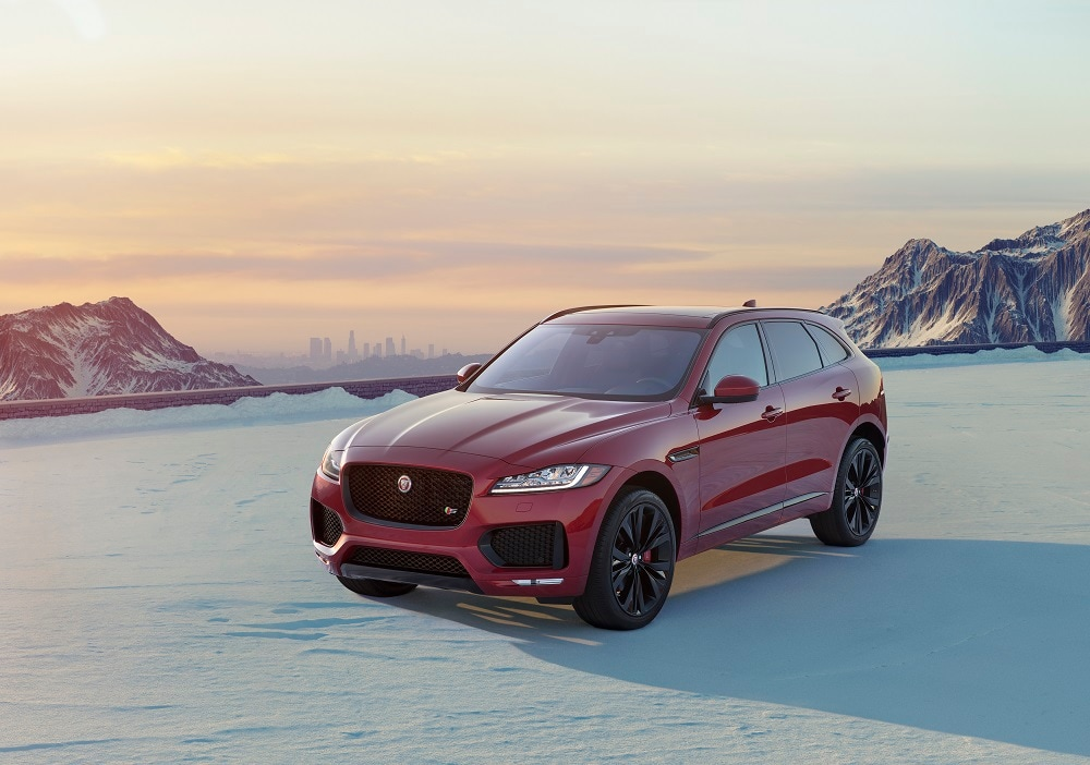 Jaguar Cars