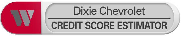 Credit Score Estimator Tool