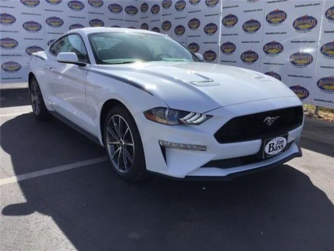New 2019 Ford Mustang Ecoboost Coupe in San Angelo. TX