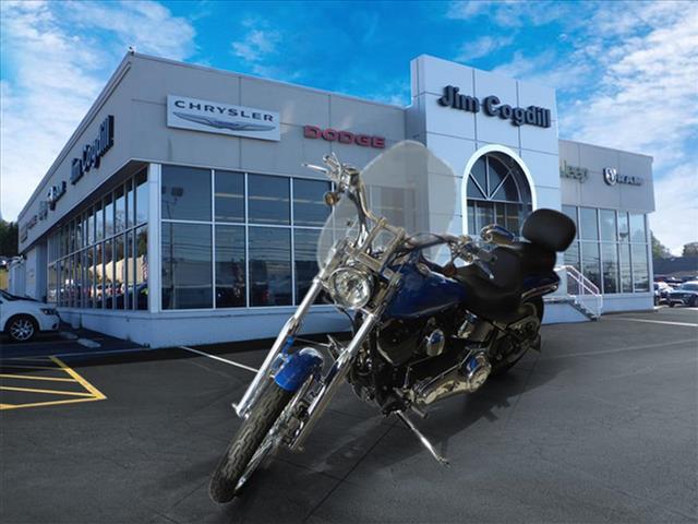 2004 Harley-Davidson Fxstdi Motorcycle Cruiser