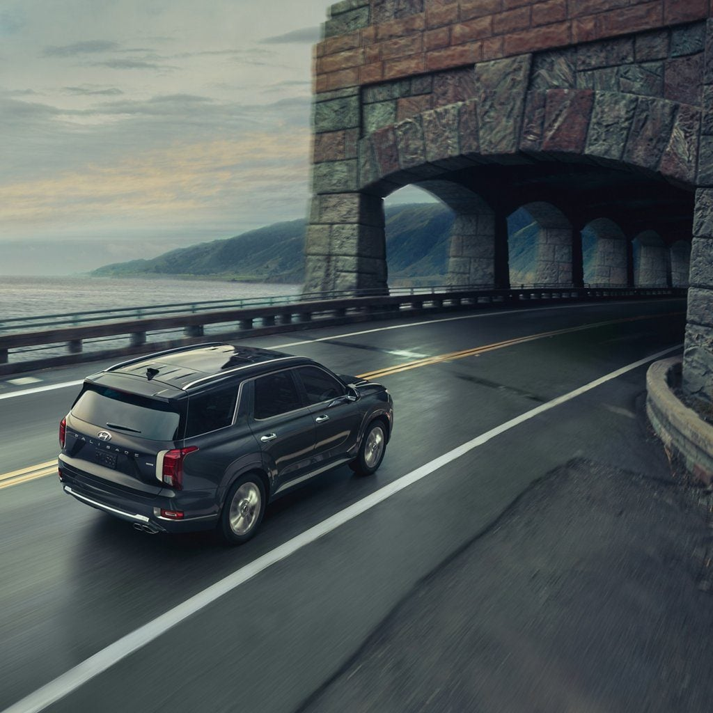 2020 Hyundai Palisade Limited tunnel