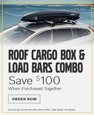 Roof Cargo Box & Load Bars Combo