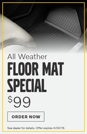 All Weather Floor Mat - April
