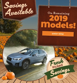 Remaining 2019 Models