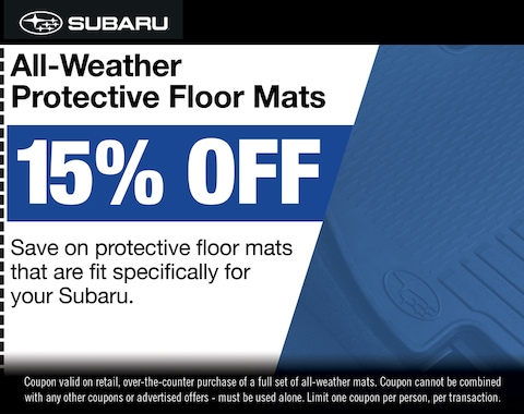 All-Weather Protective Floor Mats