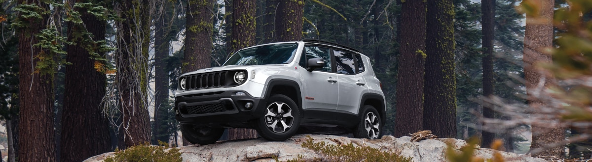 New Jeep Renegade on a rock in the woods