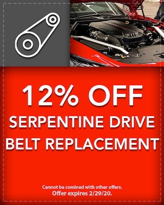 12% Off Serpentine Drive Belt Replacement