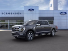 New 2021 Ford F-150 Platinum Truck for sale in Detroit MI