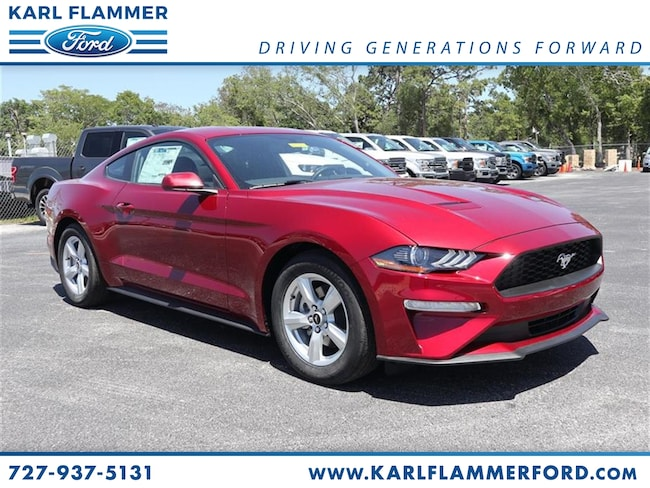 New 2019 Ford Mustang Ecoboost Coupe For Sale /LeaseTarpon Springs Florida