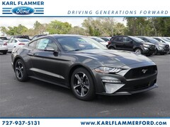 New Ford for sale 2019 Ford Mustang Ecoboost Coupe 1FA6P8THXK5167211 in Tarpon Springs, FL