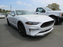New 2019 Ford Mustang EcoBoost Coupe C94017 for Sale in Belmont, NC, at Keith Hawthorne Ford of Belmont