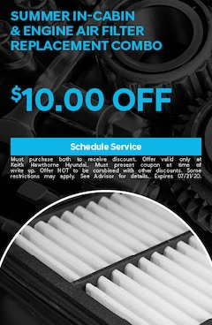 Summer In-Cabin & Engine Air Filter Replacement Combo