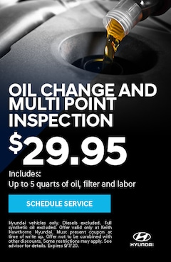 Oil Change and Multipoint Inspection