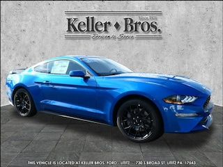 2019 Ford Mustang 1FA6P8TH6K5191053