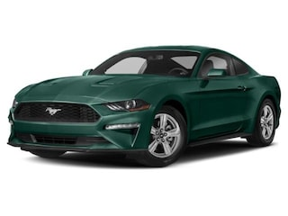2019 Ford Mustang Bullitt Fastback Car