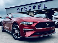 New 2019 Ford Mustang Ecoboost Coupe in Kerrville, TX