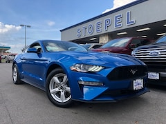 New 2019 Ford Mustang Ecoboost Coupe 1FA6P8TH5K5120569 in Kerrville, TX