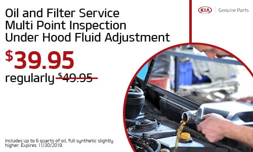 Oil and Filter Service Multi Point Inspection Under Hood Fluid Adjustment