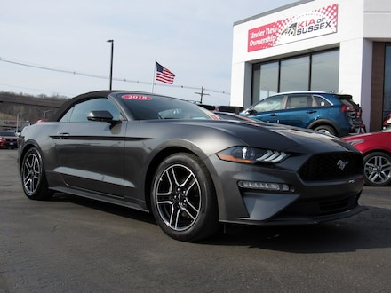 Featured used cars, trucks, and SUVs 2018 Ford Mustang EcoBoost Sedan for sale near you in Newton, NJ