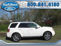 2010 Ford Escape 4WD  Limited SUV