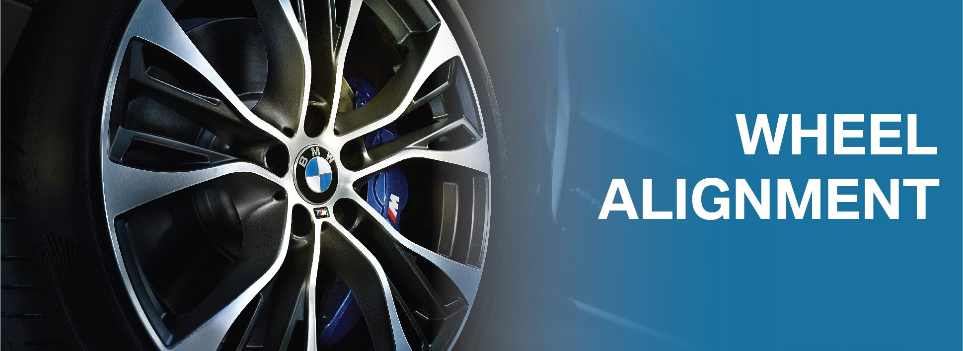 d0e0c2d8d3e BMW ALIGNMENT in Lake Bluff IL | Karl Knauz BMW