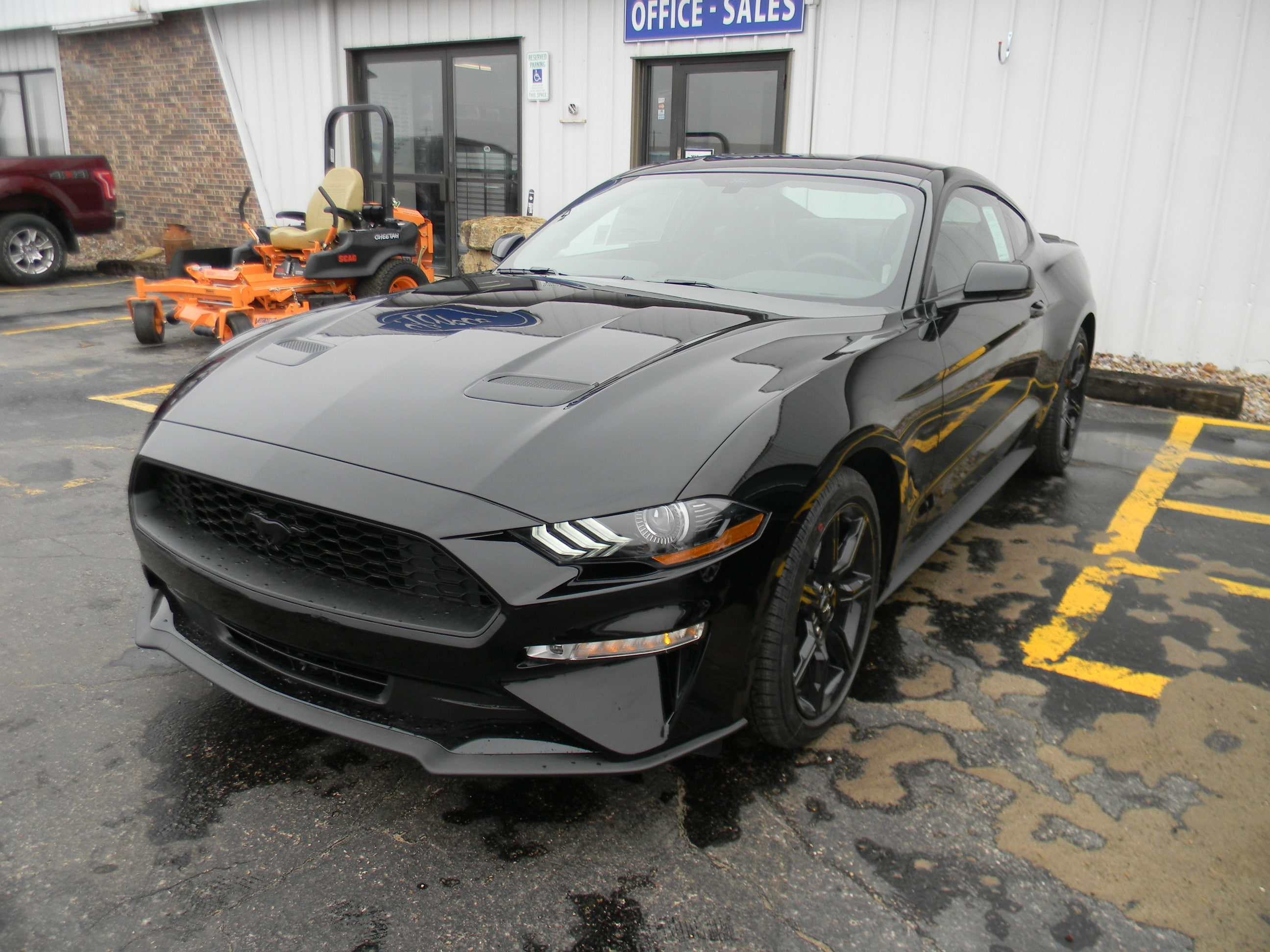 2019 Ford Mustang MUSTANG ECOBOOST  PREM Coupe