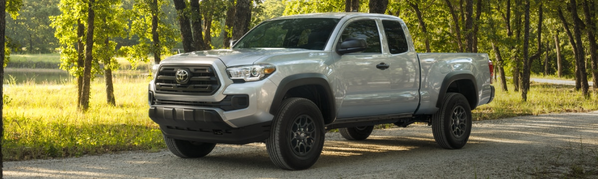 New Toyota Tacoma in the trees