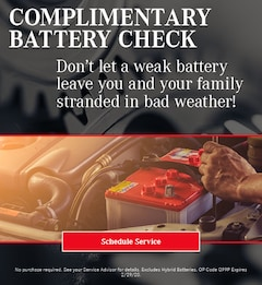 January Battery Check Special - Mercedes