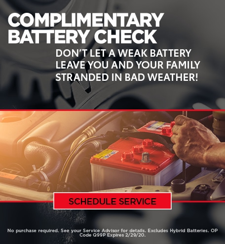 January Battery Check Special