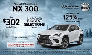 November Lexus NX 300 Special